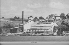 Onomea-Mill