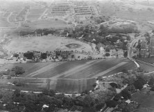 Palm Circle –USAMH 9 September 1920