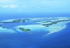 Palmyra_atoll_Pollock_yale