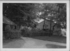 Paris Colonial, 1931-PP-20-4-002-00001
