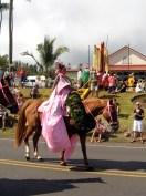 Pau_Princess_of_Maui-(enolarama)