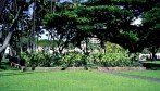 Pohukaina-Iolani_Palace-fence