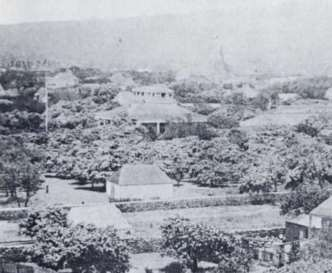 Pohukaina-in_front_of_Hale_Alii-original_Iolani_Palace-1850s