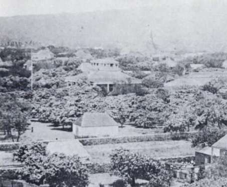 Pohukaina-in_front_of_Hale_Alii-original_Iolani_Palace-1850s