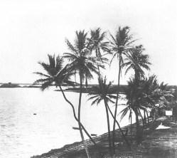 Puʻuloa_in_the_1880s
