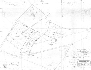 Punahou-Lower Pasture-Reg0848-1880