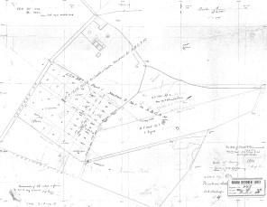 Punahou-Lower Pasture-Reg0848-1880