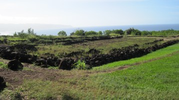 PuuoMahukaHeiau-topcorner-toward-Kaena