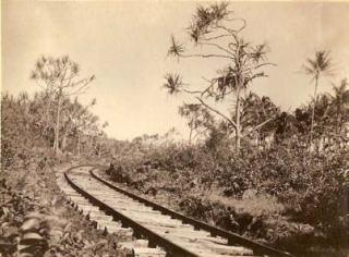 Railroad tracks through Puna-Lyman Museum-Uyeoka
