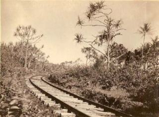 Railroad tracks through Puna-Lyman Museum-Uyeoka