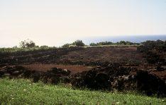 Ruins_of_Puu_O_Mahuka_Heiau