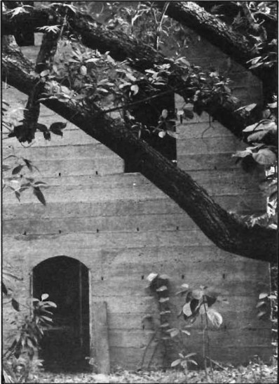 Rycroft Pohoiki guava mill-CTAHR