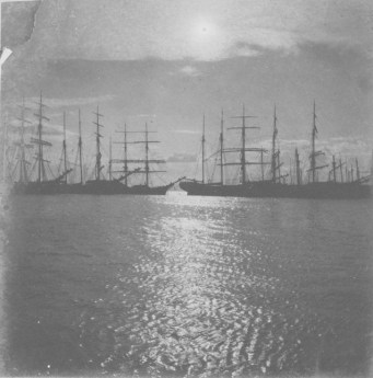 Several_Ships_at_Anchor_in_Honolulu_Harbor-1900