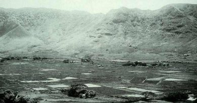 Taro Lo'i Agriculture in Mānoa Valley-(UH_Heritage)-ca_1890