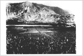 Taro Production in Heeia - 1930