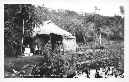 """""""The image is from the State Archives; it shows people at their home with a taro lo'i. Their land is cared for (not grown over with weeds,) and there is ample food growing; according to the preambles and laws of the Kingdom, they are not idlers."""""""