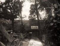 Trader Vic's Ward Avenue