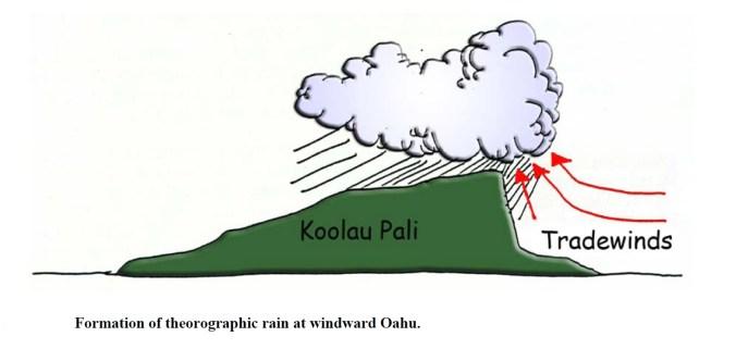 Tradewinds and the Koolau-Jokiel