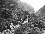 Trail up the windward side of the Pali, Honolulu Hawaii-(BishopMuseum) ca. 1890