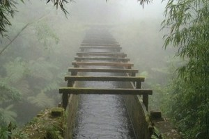 Hāmākua Ditch