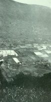 View across Mānoa Valley-(UH_Heritage)-1930