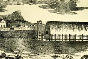 Pioneer Company