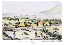 Village of Lahaina Whaleships at Anchor (hawaiianhistoricalprints-com)-1848