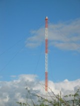 WWVH_Facility-_Antenna_close-up
