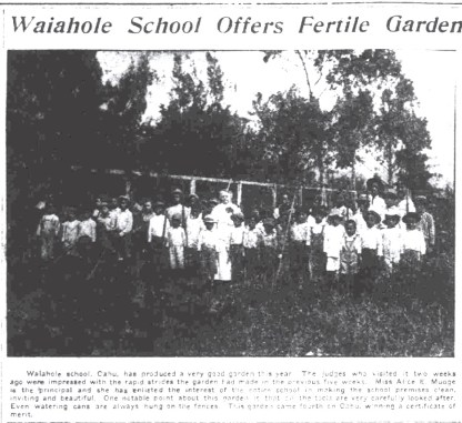 Waiahole_School_Garden-SB-April_14,_1917