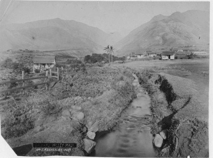 Waikapu Valley-1888