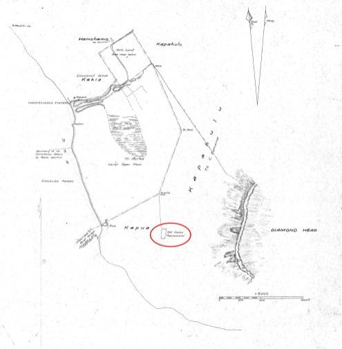 Waikiki-Kaneloa-(Before Kapiolani_Park)-Lyons-Reg0306 (1876) (portion)-noting_Papaenaena