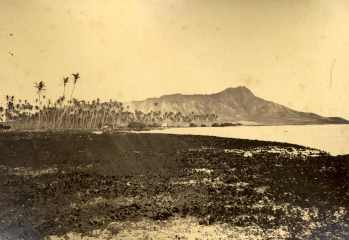 Waikiki_and_Helumoa_Coconut-(from_Ewa_end_of_Helumoa)-1870