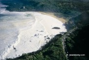 Waimea Bay-white_water_big_waves-(seandavey)