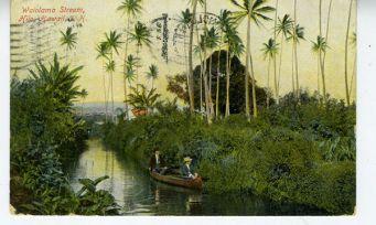 Waiolama Stream-1905