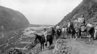 Waipio_Valley_Trail-1909