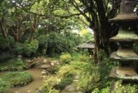Walker_Estate-Japanese-Garden-(historichawaiifoundation)