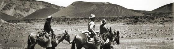 haleakala-ranch