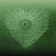 hearts-spider-web-różności-green-web-blue