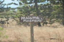 moomomi-beach