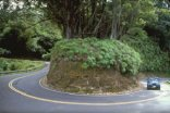 road-to-hana-highway