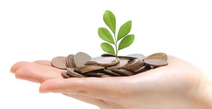 7 Ways Going Green Can Also Save You Money