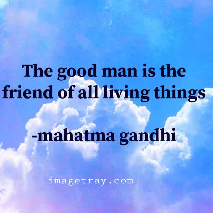 Gandhi say about youth life