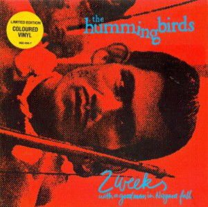 The Hummingbirds - 2 Weeks With a Good Man in Niagara Falls (1991) [FLAC] Download