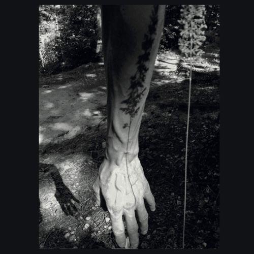 Euan Dalgarno - Nfutures (2020) [FLAC] Download