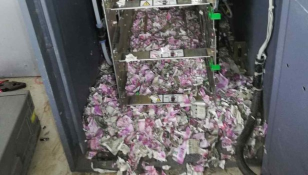 Image result for a rat broke into an atm ate $18 000 worth of cash and died