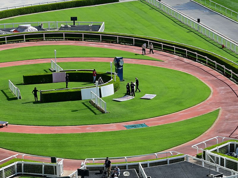 Meydan preparations for Dubai World Cup
