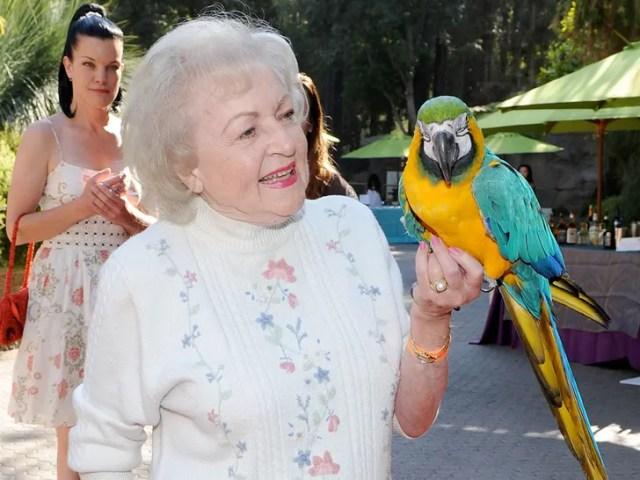 Celebrities With Birds