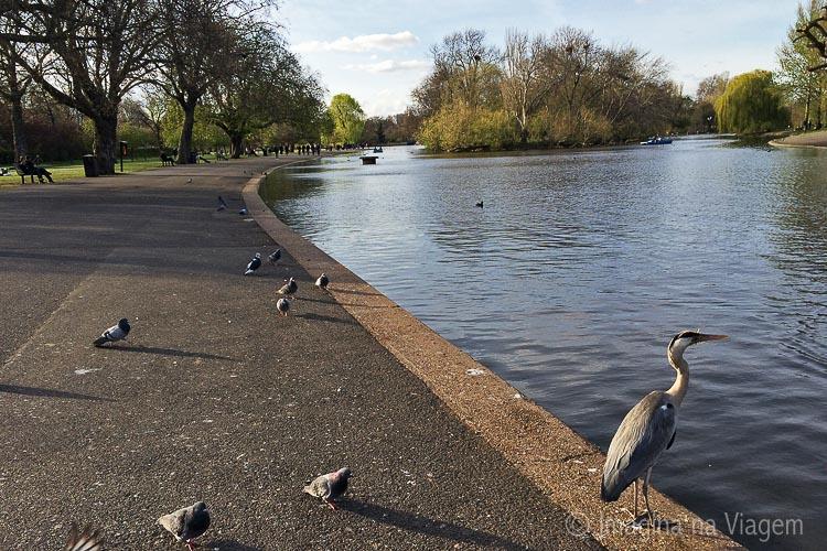 O Regent's Park é lindo e o destino certo para um passeio gostoso e tranquilo.