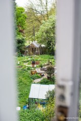 View to the garden