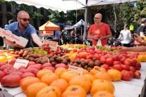 Brooklyn - Fort Green Park Market #02